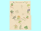 Letter set, herb  ,10pks