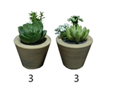 Artificial plant, succulent, 2 assort, 2.8 x 3.9 x 2.8 in, 6pks